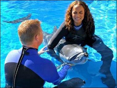 tyradolphin